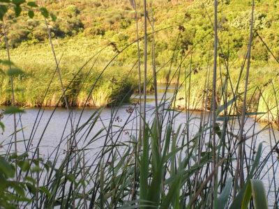 Λίμνες, Αυλάκι Άγιος Στέφανος